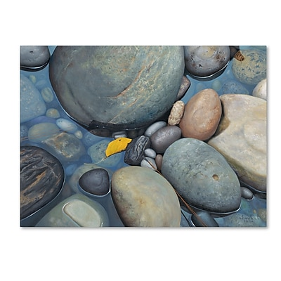 Trademark Fine Art Stephen Stavast 'Reflections on a Gray Day' 24 x 32 (ALI0744-C2432GG)