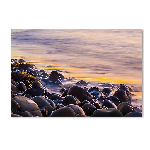Trademark Fine Art Chris Moyer 'Wet Rock Reflections'  22 x 32 (ALI0767-C2232GG)