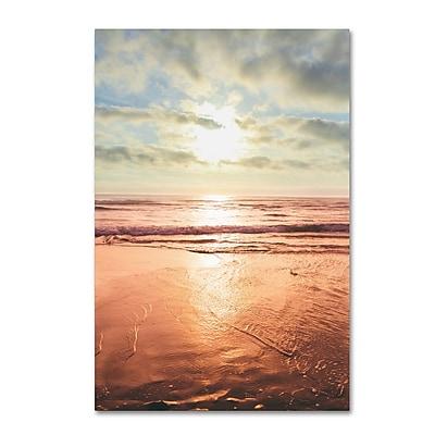 Trademark Fine Art Ariane Moshayedi 'Sunset Beach Reflections II' 12 x 19 (AM0176-C1219GG)