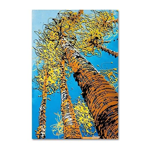 Trademark Fine Art Roderick Stevens 'Aspen Sky'  16 x 24 (RS996-C1624GG)