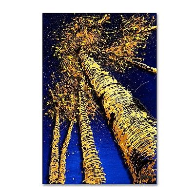 Trademark Fine Art Roderick Stevens 'Aspen Sky 2' 12 x 19 (RS999-C1219GG)