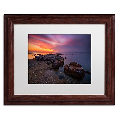 Trademark Fine Art Lincoln Harrison 'Beach at Sunset 6' 11 x 14 (ALI0728-W1114MF)