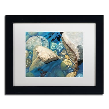 Trademark Fine Art Stephen Stavast 'Blue Water Dance' 11 x 14 (ALI0743-B1114MF)