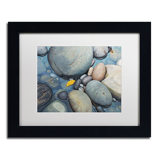 Trademark Fine Art Stephen Stavast 'Reflections on a Gray Day'  11 x 14 (ALI0744-B1114MF)