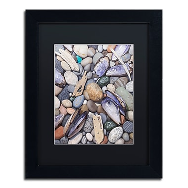 Trademark Fine Art Stephen Stavast 'Treasure at Muscle Beach' 11 x 14 (886511730724)