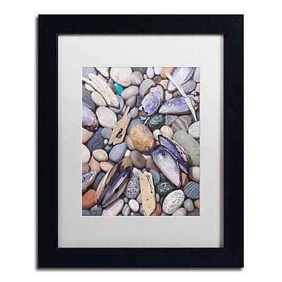 Trademark Fine Art Stephen Stavast 'Treasure at Muscle Beach' 11 x 14 (ALI0747-B1114MF)