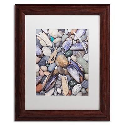 Trademark Fine Art Stephen Stavast 'Treasure at Muscle Beach' 11 x 14 (ALI0747-W1114MF)