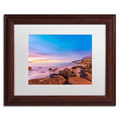 Trademark Fine Art Chris Moyer 'Low Shoals View' 11 x 14 (ALI0763-W1114MF)