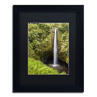 Trademark Fine Art Chris Moyer 'Akaka Falls' 11 x 14 (886511731820)