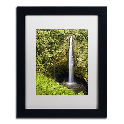Trademark Fine Art Chris Moyer 'Akaka Falls' 11 x 14 (ALI0769-B1114MF)