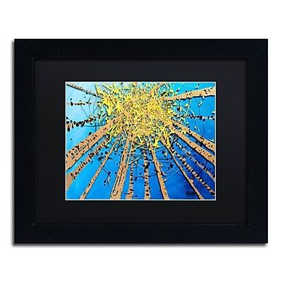 Trademark Fine Art Roderick Stevens 'Brown Aspen Sky' 11 x 14 (RS995-B1114BMF)