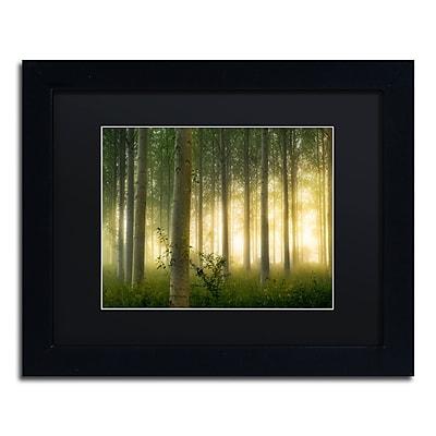 Trademark Fine Art Mathieu Rivrin 'Enchanted World' 11 x 14 (RV0036-B1114BMF)