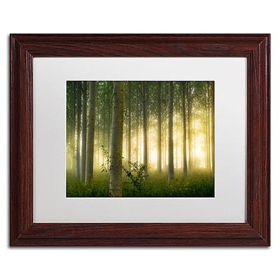 Trademark Fine Art Mathieu Rivrin 'Enchanted World' 11 x 14 (RV0036-W1114MF)
