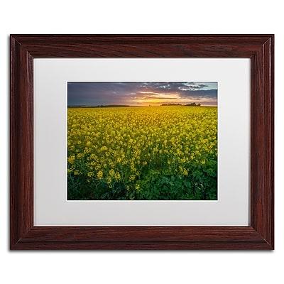 Trademark Fine Art Mathieu Rivrin 'Yellow Planet' 11 x 14 (RV0044-W1114MF)