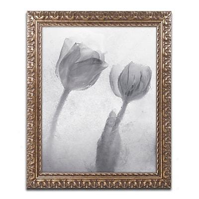 Trademark Global Moises Levy 'Flowers on Ice-1' Ornate Framed Art, 16
