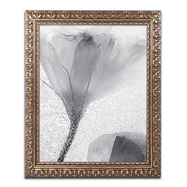 Trademark Fine Art Moises Levy 'Flowers on Ice-13' 11 x 14 (ALI0734-G1114F)