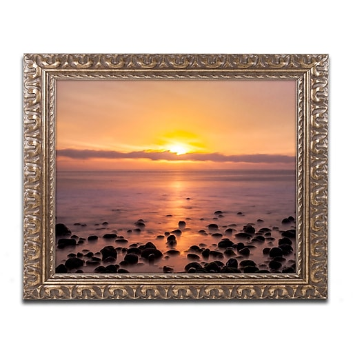 "Trademark Global Chris Moyer 'Pacific Sunset' Ornate Framed Art, 16"" x 20"" (ALI0765-G1620F)"