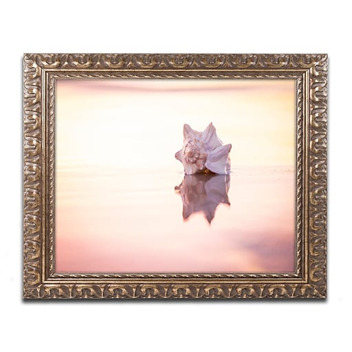 """Trademark Global Chris Moyer 'King of the Beach' Ornate Art, 16""""L x 20""""W, Framed (ALI0772-G1620F)"""