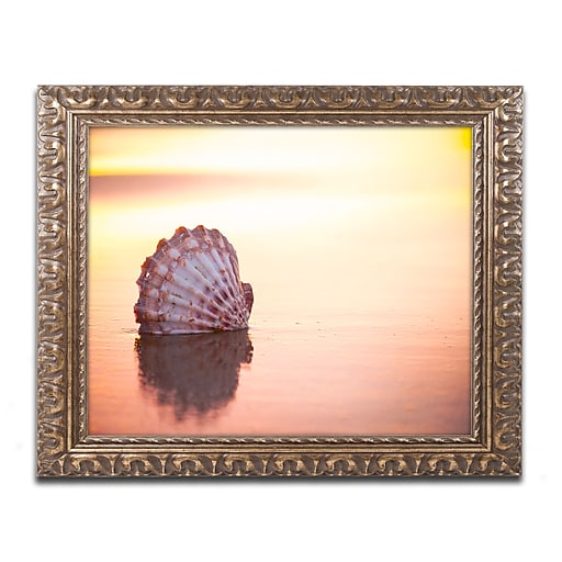 "Trademark Glo0bal Chris Moyer 'Battered But Beautiful' Ornate Framed Art, 16"" x 20"" (ALI0773-G1620F)"