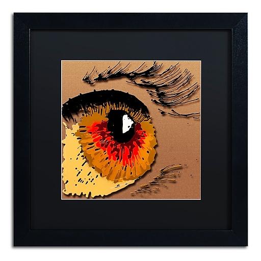 Trademark Fine Art Roderick Stevens 'Eye 1'  16 x 16 (RS1000-B1616BMF)