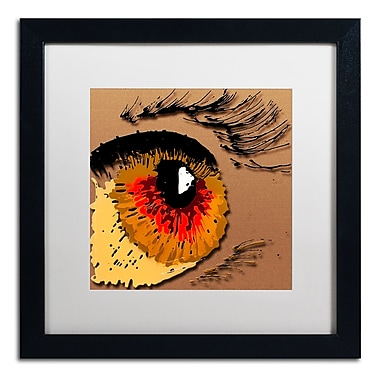 Trademark Fine Art Roderick Stevens 'Eye 1' 16 x 16 (RS1000-B1616MF)