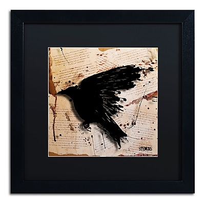 Trademark Fine Art Roderick Stevens 'The Raven 3' 16 x 16 (RS1013-B1616BMF)