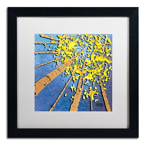 Trademark Fine Art Roderick Stevens 'Aspen Sky'  16 x 16 (RS975-B1616MF)