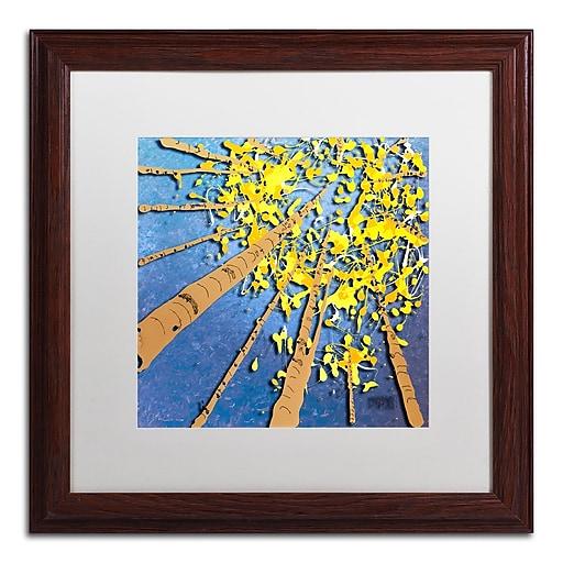 Trademark Fine Art Roderick Stevens 'Aspen Sky'  16 x 16 (RS975-W1616MF)