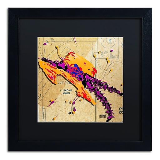 Trademark Fine Art Roderick Stevens 'Orange Hat Purple Feathers'  16 x 16 (RS984-B1616BMF)