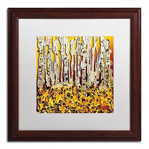 Trademark Fine Art Roderick Stevens 'Silver Aspens'  16 x 16 (RS993-W1616MF)