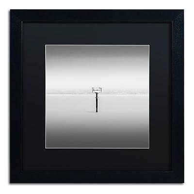 Trademark Fine Art Dave MacVicar 'Isolation' 16 x 16 (886511742628)