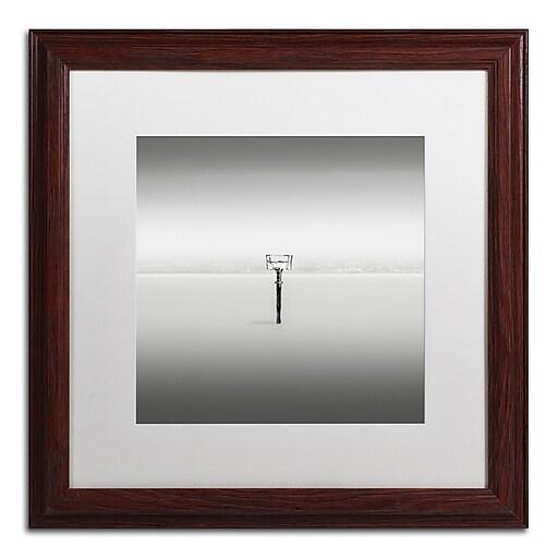 Trademark Fine Art Dave MacVicar 'Isolation'  16 x 16 (ALI0836-W1616MF)