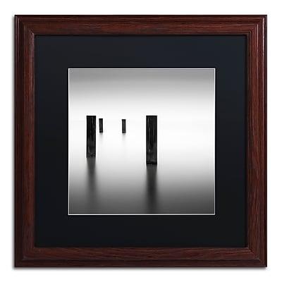 Trademark Fine Art Dave MacVicar 'Lucid' 16 x 16 (886511743199)