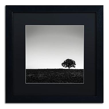 Trademark Fine Art Dave MacVicar 'One Tree Hill' 16 x 16 (886511743267)