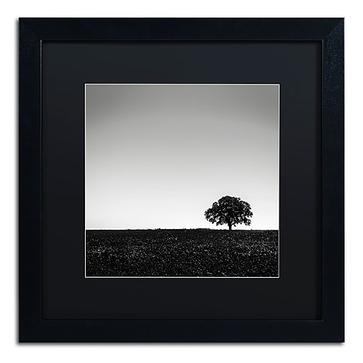 Trademark Fine Art Dave MacVicar 'One Tree Hill'  16 x 16 (886511743267)