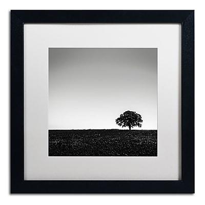 Trademark Fine Art Dave MacVicar 'One Tree Hill' 16 x 16 (ALI0843-B1616MF)