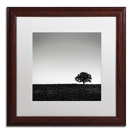 Trademark Fine Art Dave MacVicar 'One Tree Hill'  16 x 16 (ALI0843-W1616MF)