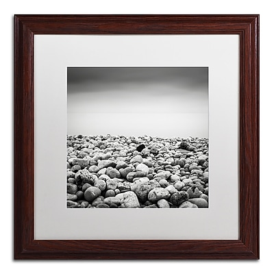 Trademark Fine Art Dave MacVicar 'Pebble Beach' 16 x 16 (ALI0844-W1616MF)