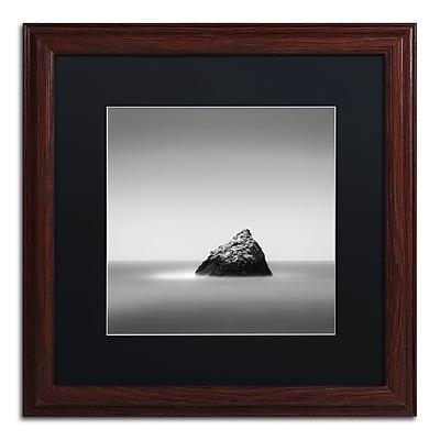 Trademark Fine Art Dave MacVicar 'Pointed' 16 x 16 (886511743731)