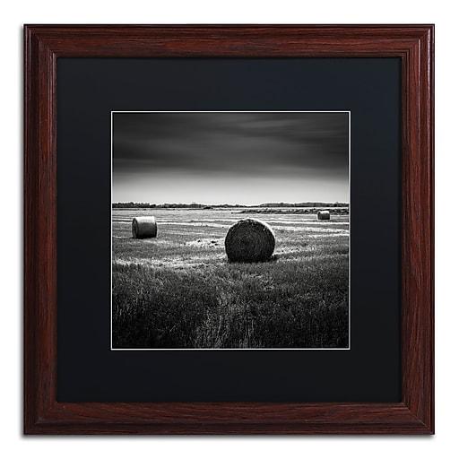 Trademark Fine Art Dave MacVicar 'Rural'  16 x 16 (886511743830)