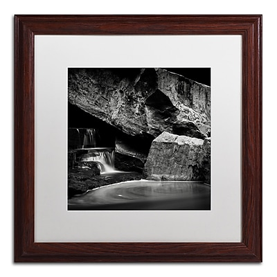 Trademark Fine Art Dave MacVicar 'Whirlpool' 16 x 16 (ALI0866-W1616MF)