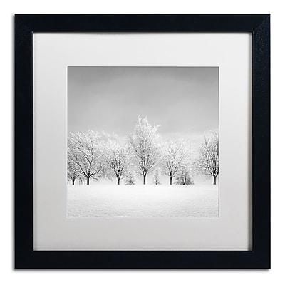 Trademark Fine Art Dave MacVicar 'Ice Storm' 16 x 16 (ALI0870-B1616MF)