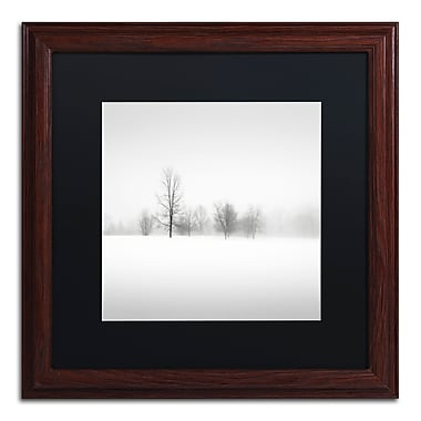 Trademark Fine Art Dave MacVicar 'Winter Fog' 16 x 16 (886511746398)