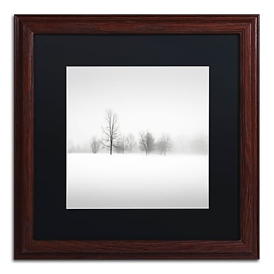 Trademark Fine Art Dave MacVicar 'Winter Fog' 16 x 16 (886511746398)