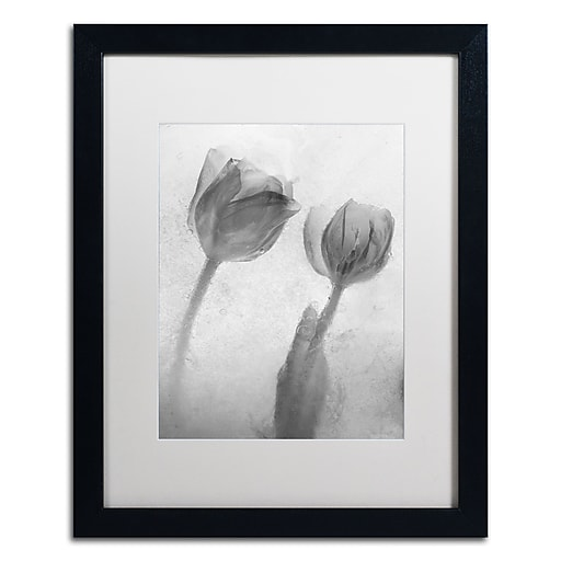 Trademark Fine Art Moises Levy 'Flowers on Ice-1'  16 x 20 (ALI0733-B1620MF)