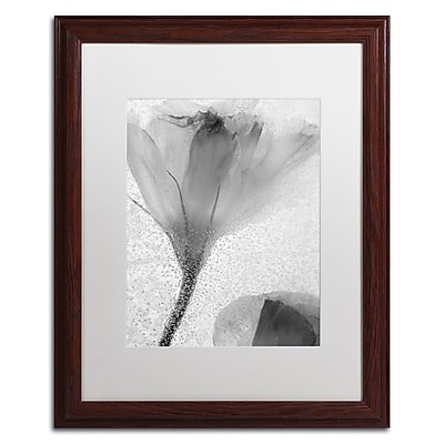 Trademark Fine Art Moises Levy 'Flowers on Ice-13' 16 x 20 (ALI0734-W1620MF)