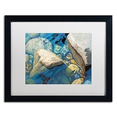 Trademark Fine Art Stephen Stavast 'Blue Water Dance' 16 x 20 (ALI0743-B1620MF)