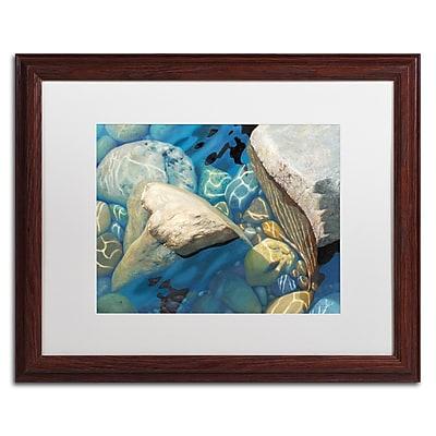 Trademark Fine Art Stephen Stavast 'Blue Water Dance' 16 x 20 (ALI0743-W1620MF)