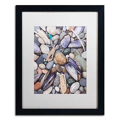 Trademark Fine Art Stephen Stavast 'Treasure at Muscle Beach' 16 x 20 (ALI0747-B1620MF)