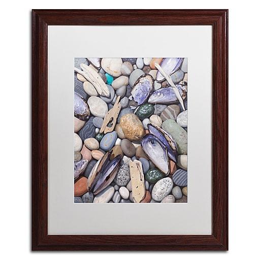 Trademark Fine Art Stephen Stavast 'Treasure at Muscle Beach'  16 x 20 (ALI0747-W1620MF)